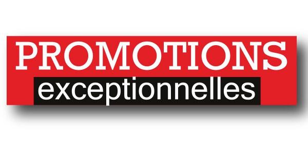 """Affiche """"PROMOTIONS EXCEPTIONNELLES"""" L115 H30 cm"""