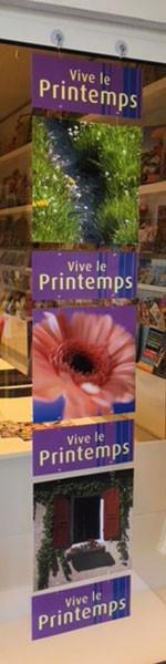 """7 cartons """"Le Printemps"""" L34 H150 cm"""