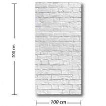 PANO VITRINE BRIQUES L100 H 200 cm